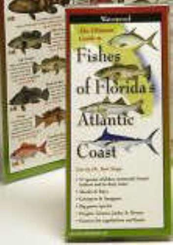 Fishes of Florida's atlantic coast