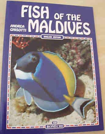 Fish of the Maldives - Wonderful photography