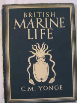 BRITAIN IN PICTURES SERIES. BRITISH  MARINE LIFE BY C M YONGE