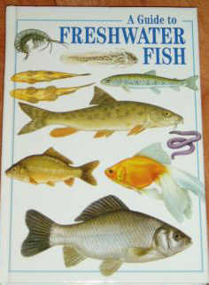 A Guide to Freshwater Fish