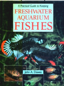 A Practical Guide to Keeping Freshwater Aquarium Fishes
