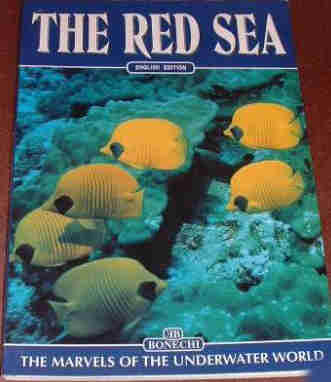 The Red Sea. The Marvels of the Underwater World